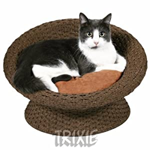 Minature Dog Small Cat Sofa Sofa Enrique, Polyrattan, Size 53×31cm