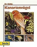 Ihr Hobby: Kanarienvögel richtig pflegen
