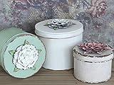 Chic Antique Aufbewahrungsbox mit Rosen Deckel Shabby Vintage 3 Größen (Größe L - Franz. Creme)