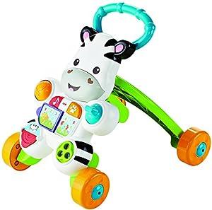 Infant - Cebra parlanchina, primeros pasos Fisher-Price (Mattel DLD96) (versión en francés)