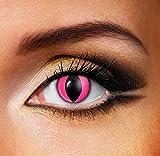 Funky Vision Kontaktlinsen - 3 Monatslinsen, Pink Cat, Ohne Sehstärke, 1 Stück