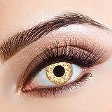 Karneval Klamotten Farblinsen Farbige Kontaktlinsen Jahreslinsen ohne Stärke Halloween gold