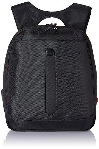 Delsey Ballecour 15 Ltrs Black Backpack-PC (00335560000)