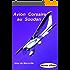 Avion Corsaire au Soudan