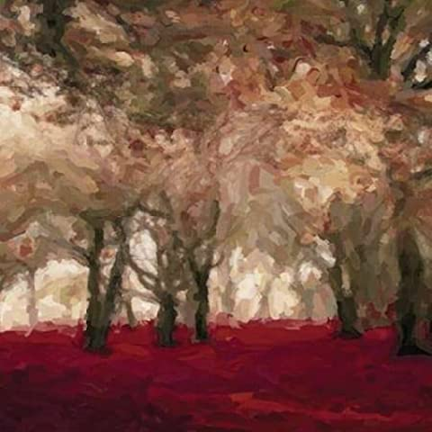 Forest Floor Crimson A by Greene, Taylor-Stampa su tela in