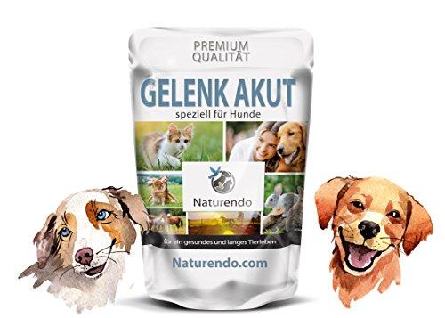 Gelenk Akut speziell für Hunde - mit MSM+ Chondroitin Glucosamin Collagen Bänder Sehnen Hund (400g)