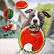 PawsIndia Watermelon Tug Frisbee Chewer with Teeth Cleaning Rope for Dog - Multicolor