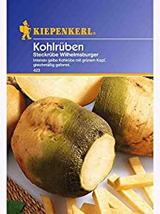 Steckrüben Grünköpfige gelbe Wilhelmsburger