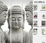EFIXS 3er Set Flächenvorhang - Motiv Buddha - halbtransparent und lichtdurchlässig - Breite (pro Paneel): 60 cm x Höhe: 245 cm - Gesamtbreite 180 x 245 cm - incl. Flauschband, Paneelwagen und Beschwerungsprofil - Schiebegardine - Raumteiler