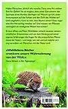 Das geheime Band zwischen Mensch und Natur: Erstaunliche Erkenntnisse über die 7 Sinne des Menschen, den Herzschlag der Bäume und die Frage, ob Pflanzen ein Bewusstsein haben - Peter Wohlleben