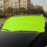 SAVORI Autoscheibenabdeckung Sonnenschutz Sonnenblende Frontscheibe Windschutzscheiben Abdeckung Anti Schnee für