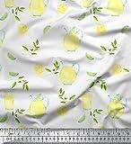 Soimoi Weiß Baumwolle Batist Stoff Zitronenscheibe &