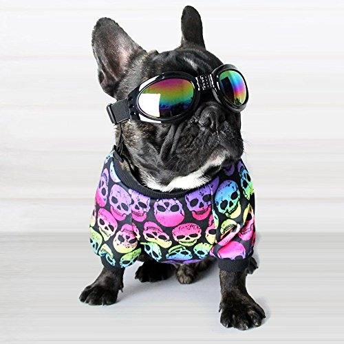 Zoom IMG-1 fretod occhiali per cani da
