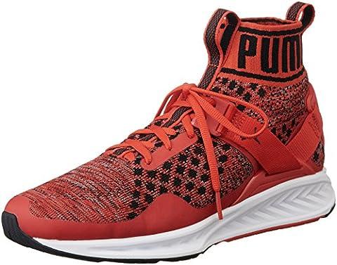 Puma Unisex-Erwachsene Ignite Evoknit Laufschuhe, Rot (High Risk Red-Quiet Shade-Puma Black 02), 43