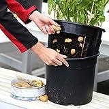 tomgarten PotatoPot inklusive 3x Küchenkräuter-Saatgut | einfaches pflanzen von Kartoffeln auf dem Balkon oder der Terasse | inklusive passendem Kräuter-Saatgut