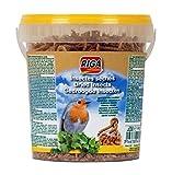 Riga Getrocknete Insekten, 2er Pack (2 x 140 g)
