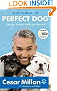 #3: How to Raise the Perfect Dog: Through puppyhood and beyond