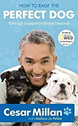 How to Raise the Perfect Dog: Through puppyhood and beyond by Cesar Millan (2010-02-18)
