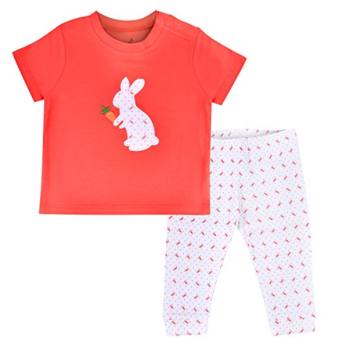 Flybees Baby Boy's and Girl's Cotton T-Shirt & Pants Set (Red, 3 month to 3 Years)