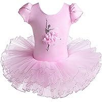HUANQIUE Girls 3-8Y Ballerina Ballet Dress Flower with Pearl Gymnastics Leotard Dancing TuTu Skirt Dancewear Costumes