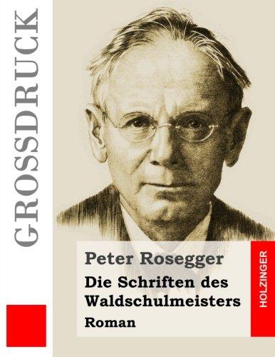 Die Schriften des Waldschulmeisters (Großdruck): Roman