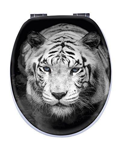 WC-Sitz  Oberfläche