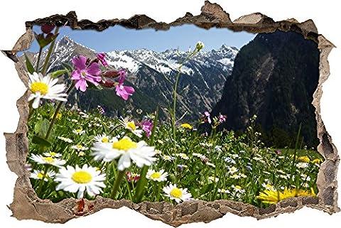 Pixxprint 3D_WD_S2030_62x42 prächtige Alpenwiese in den Bergen Wanddurchbruch 3D Wandtattoo, Vinyl, bunt, 62 x 42 x 0,02 (Usa Zu Weihnachten)