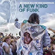New Kind of Funk