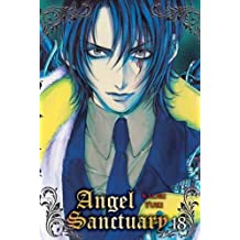 Angel Sanctuary T18 (NED)