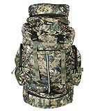 #6: Bleu Hiking Lightweight Travel Rucksack Backpack BP-299