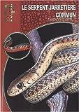 Le Serpent-Jarretière Commun - Thamnophis Sirtalis