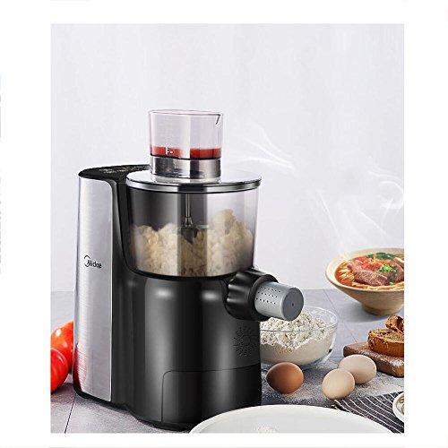 ITAPMNOD Elektrische Nudelmaschine Für Regelmäßige Glutenfrei Vollkorn-Pasta,Traditionelles Nudelmaschine