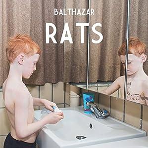 """Afficher """"Rats, 2012"""""""