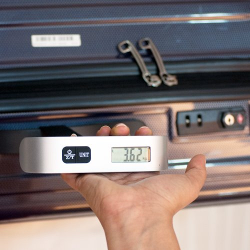 EZ LIFE Portable Digital Luggage Weighing Scale 50kgs-ez-dls-1-013gry(Silver)