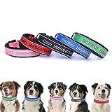 Oncpcare Dickes, reflektierendes Hundehalsband, personalisierbar, personalisierbar, mit Namen und Telefonnummer, personalisierbares Hundehalsband für mittelgroße und große Hunde