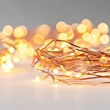 Best General Electric Christmas Trees - 20 Delicate Battery LEDs On A 2m Copper Review