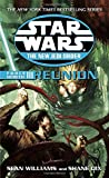 Reunion: Star Wars Legends (The New Jedi Order: Force Heretic, Book III) (Star Wars: The New Jedi Order - Legends, Band 17)