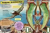 Papierflieger: Dinosaurier und fliegende Reptilien: 6 Stanzmodelle (Stickerb?cher/Modellbogen)