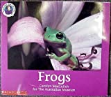 Frogs (Reading Discovery)