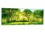 Grande stampa di vetro/immagine CENTRAL PARK NATURE AG312500290 Wall deco 125 x 50 cm Deco Glass, Design & fatto a mano