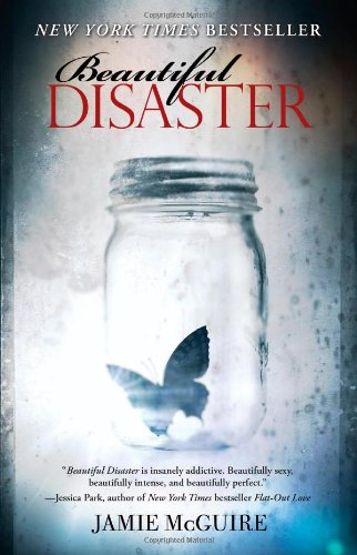 Beautiful Disaster (Maddox Brothers)