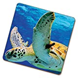 eSwish Bere sottobicchiere Tartaruga Animali Selvatica