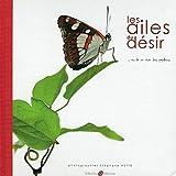 Les ailes du désir... - Ou la vie rêvée des papillons