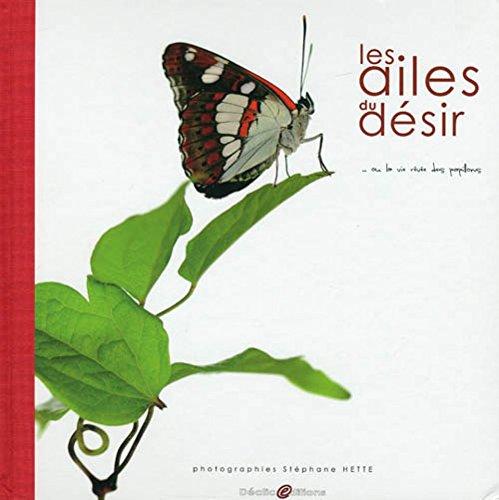 Les ailes du désir... : Ou la vie rêvée des papillons