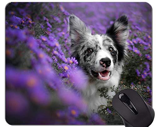 Naturkautschuk-Mauspad Bedruckt mit Hunde-Border-Collie - Genähte Kanten