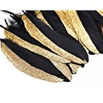 Coucoland Party Dekoration Federn 42 Stück Gold/Silber 1920s Gatsby Deko Geburtstagsparty Deko Kinder Bastelarbeit…