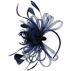 HIDOLL Tocado de malla con plumas de flores para fiestas de té Kentucky Derby con clip para el pelo y diadema para mujeres o niñas