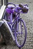 The Poster Corp Panoramic Images - Purple Bicycle on Street