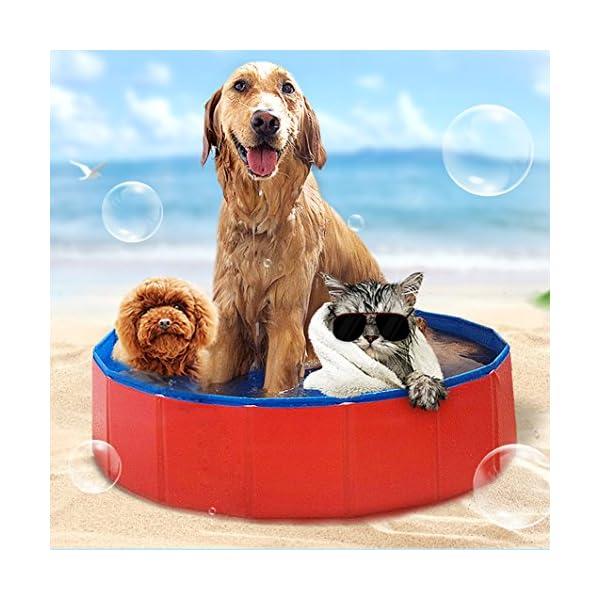Foldable Large Dog Pet Pool Bathing Tub 2