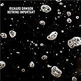 Songtexte von Richard Dawson - Nothing Important